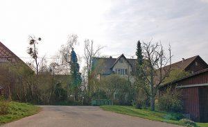 Aichholzhof von Osten