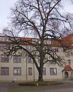Reichsburg und Schloss