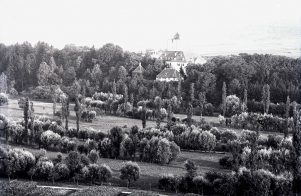 Enzaue vor Schloss Unterriexingen