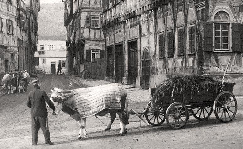 Mist führen 1910