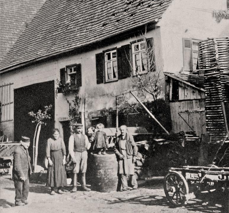 Küfer Widmaier